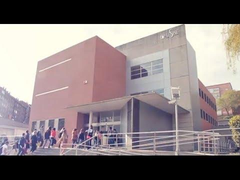 CESINE - Grados Universitarios