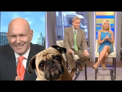 Spouse-On-Spouse Marriage Includes Dogs Warns Fox News' Dr Keith Ablow