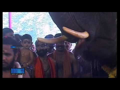 Feast for Elephants at Thrissur Vadakkumnatha Temple