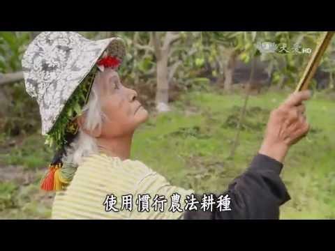 台綜-農夫與他的田-20160704 部落裡的農藝傳承