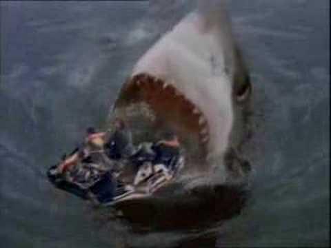 Shark Eating Man Drawing See How Big Shark Eat a Human