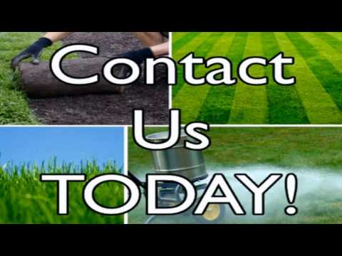 Best Lawn Care Service Sandy Springs GA