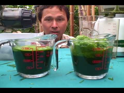 Kuvings Whole Slow Juicer Vs Omega 8006 : Hurom Slow Juicer vs Omega vRT 350 Juicer - What s The Difference? How To Save Money And Do It ...