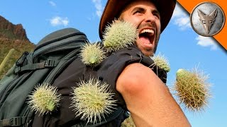 Brave Wilderness | EXTREME Cactus Attack!