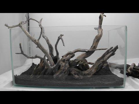Aquascape Using Manzy Wood And Dragon Rock Youtube
