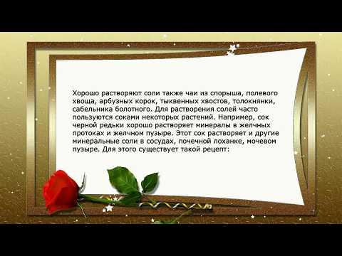 Б болотов / травник академика болотова
