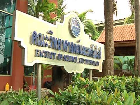 แนะนำมหาวิทยาลัยกรุงเทพธนบุรี