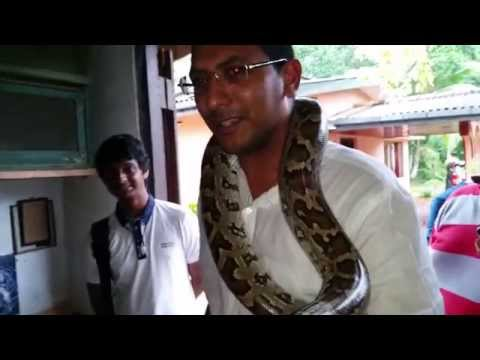 Snakes In Sri Lanka For Jay Dagner video
