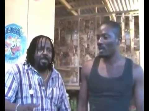 JAMAICA : LIGHTNING MEETS PATTER FLEX & BLUE STEEL.