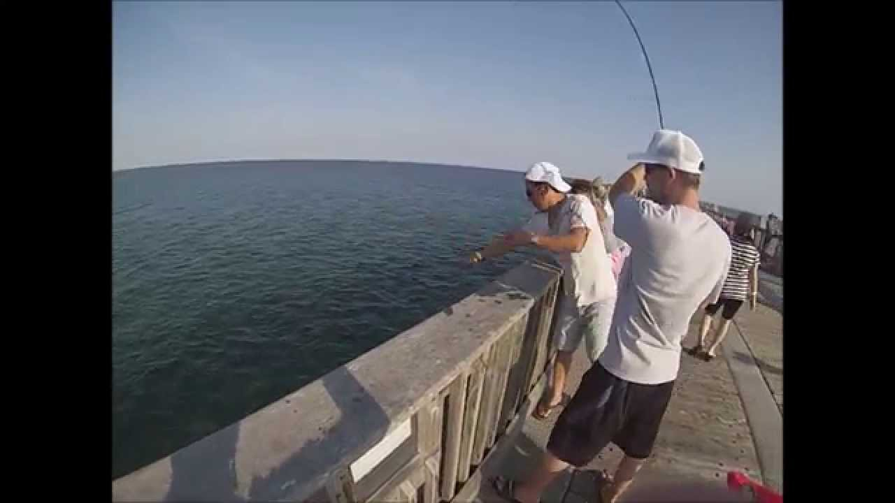 how to catch mackerel from a pier