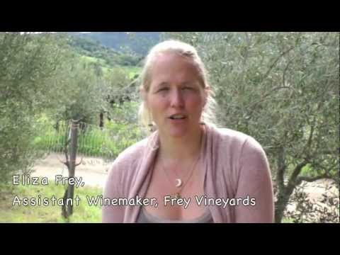Frey Biodynamic & Organic Field Blend wine