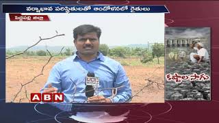 ABN Special Focus On Drought In Peddapalli And West Godavari districts