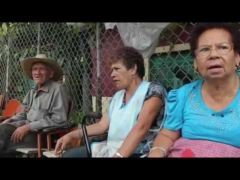 Inconformes por la poda de arboles en la comunidad El Crucero