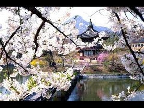 Korea Travel Guide