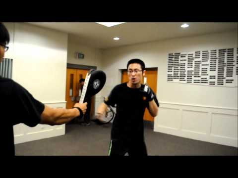 Jeet Kune Do - Hook Punch Image 1