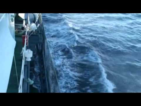 Sea Shepherd's Bob Barker launches attack on Shonan Maru No.2 - Trying to submit an arrest warrant