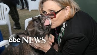 Carrie Fisher Reported to Suffer Cardiac Arrest on Trans-Atlantic Flight