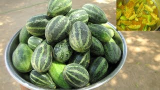 Cooking Cucamelons Recipe in My Village | Mini Watermelon | VILLAGE FOOD
