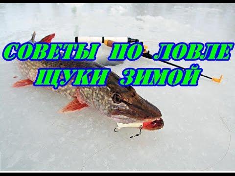 техника ловли на блесну щуки видео
