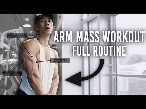 How To Get Bigger Arms Explained (MASSIVE PUMP) Full Arm Workout & Routine Explained to Gain Size