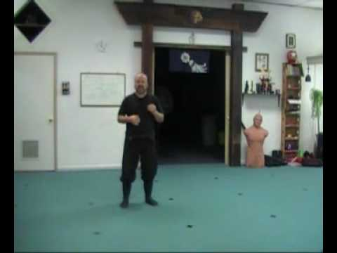 Online Ninja Training Lesson - Ninja Walking Pt. 2 Image 1