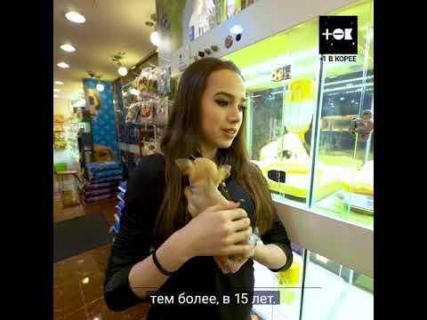 Алина Загитова, Рита Мамун и щеночки/ Alina Zagitova Rita Mamun