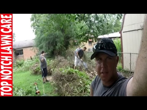 Lawn & Landscape Property Renovation, Lawn Care Vlog #134