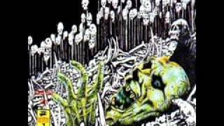 Q. V. 7 - La sangre (El Punk No Esta Muerto Vol.3)