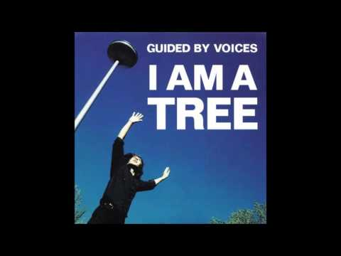 Guided By Voices - No Welcome Wagons