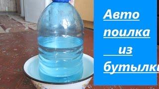 Поилка из пластиковой бутылки своими руками