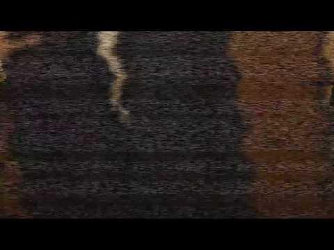 Caso: Slenderman | Grabacion #1