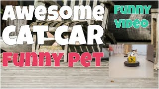 Awesome cat car 🔸 7 second of happiness FUNNY Video 😂#372