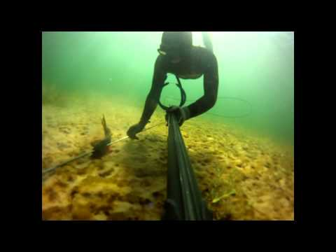 Utah FreeDiving and Spear Fishing
