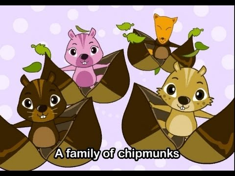 Muffin Songs - Animal Songs (Medley) | nursery rhymes & children songs with lyrics