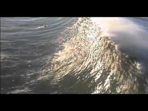 "Mavericks in Half Moon Bay CA - Big Wave ""Riding Giants"" - jeremykirkf"