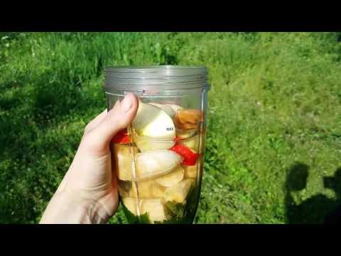 Мой ЗЕЛЕНЫЙ КОКТЕЙЛЬ    Как не поломать Нутрибуллит (Nutribullet)   Дикоросы в зеленый коктейль