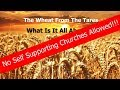 """Wheat From The Tares: Deer Park, WA """"No Self Supporting Churches Allowed!?"""""""