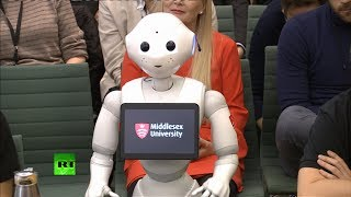LIVE: An 'emotionally aware' robot called Pepper appears before MPs