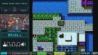 Teenage Mutant Ninja Turtles by whitman_price_ in 21:49 - AGDQ 2018 - Part 73