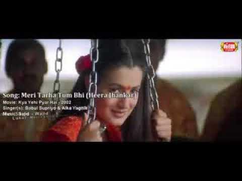 Pintu Gujarat(20)