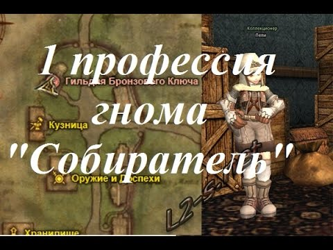 Lineage 2 goddess of destruction - скрины одежды (r, r95, r99),чаров и