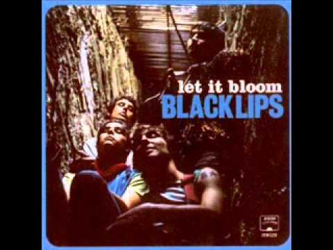 BLACK LIPS-Not a problem.wmv