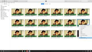 Delete a Video from iTunes Library