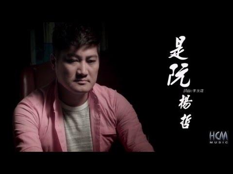 楊哲-是阮