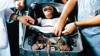 NASA's First Chimp in Space