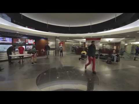 University of Houston - C.T. Bauer College of Business - Blank Space Parody