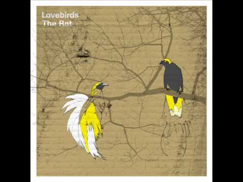 The Lovebirds - The Rat [freerange] video