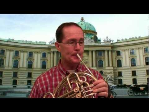 Mozart Horn Concerto No 1, 1st Mvnt, Steve Park - Horn
