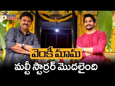 Venkatesh & Naga Chaitanya Multistarrer Movie Launch | Bobby | Rakul Preet | 2019 Tollywood Updates