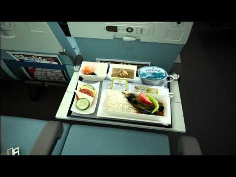 Turkish Airlines - Economy Class 3D